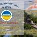 Коктейл парти на открито по случай новата учебна година във Велико Търново