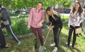 """Ученици от Училища Европа - Козлодуй се включиха в националната кампания """"Гората на ЕВРОПА"""